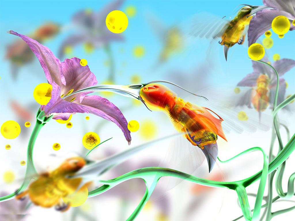 Boats Posted In D Tags Colored Flowers 186516 Wallpaper wallpaper