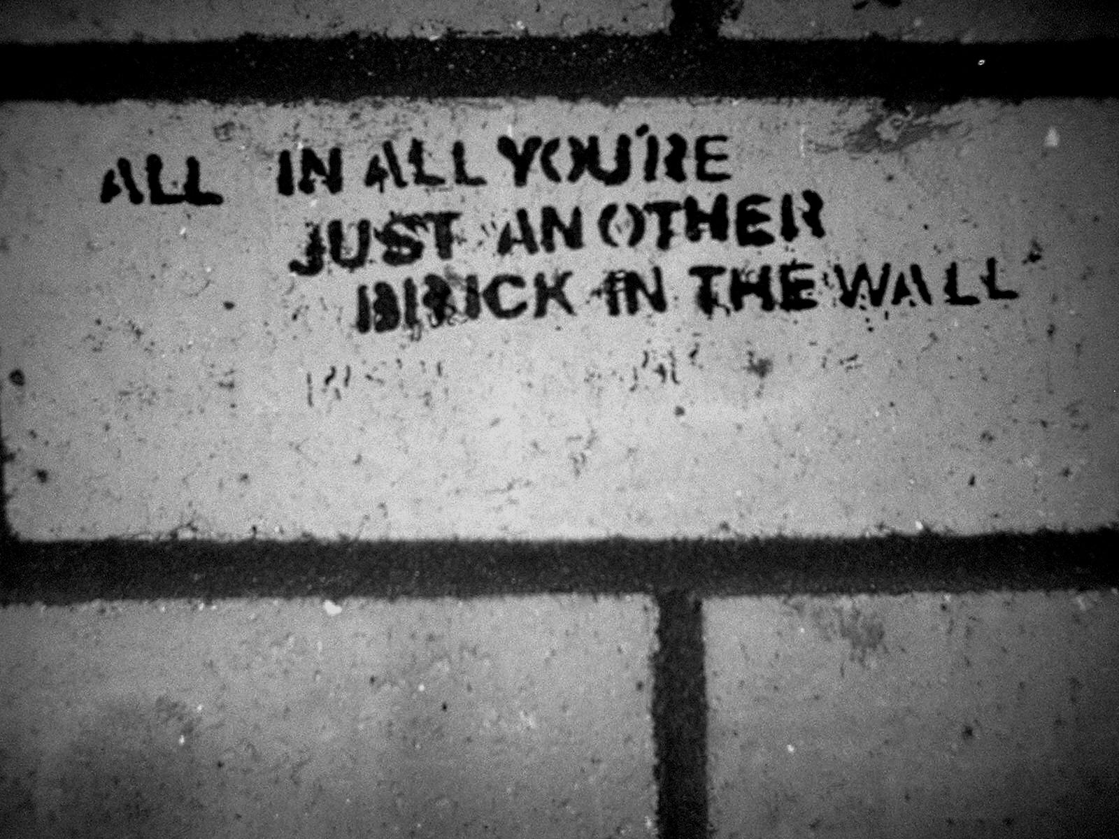 Pink Floyd Animals Quotes The Wall Desktop X 737287 Wallpaper wallpaper