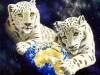 Animals Fantasy Art 736666 Wallpaper wallpaper