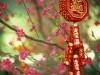 Anime Chinese Flowers Free 173576 Wallpaper wallpaper